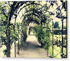 Irish Archway Acrylic Print by Linde Townsend