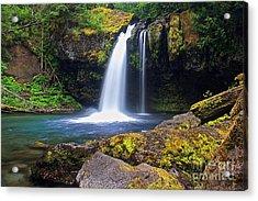 Iron Creek Falls Acrylic Print by Marcus Angeline