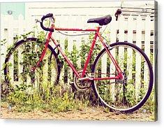 Ivy Bike Acrylic Print by Laura George