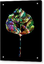 Jewel Tone Leaf Acrylic Print by Ann Powell