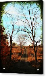 Journey To The Past Acrylic Print by Bill Cannon