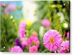 Joy Of Summer Time Acrylic Print by Jenny Rainbow