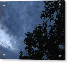 June Apple Trees In The Clouds Acrylic Print by Charles Dancik