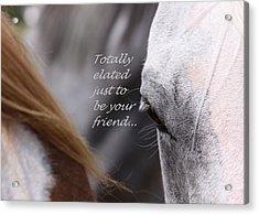 Just Friends Acrylic Print by Travis Truelove