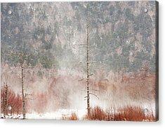 Kamikochi Winter Acrylic Print by Skye Hohmann