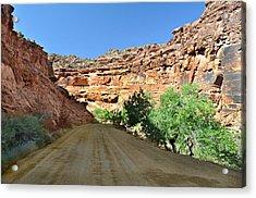 Kane Creek Road Acrylic Print by Marty Koch