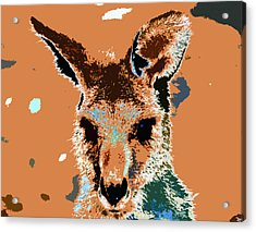 Kanga Roo Acrylic Print by David Lee Thompson