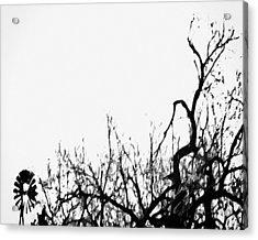 Kansas Acrylic Print by Tony Grider