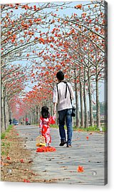 Kapok Road Acrylic Print by Frank Chen