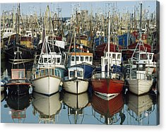 Kilkeel, Co Down, Ireland Rows Of Boats Acrylic Print by The Irish Image Collection