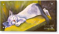 Kitten Dream Acrylic Print by Susan A Becker