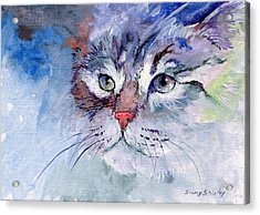 Kitty In Blue Acrylic Print by Sherry Shipley