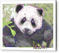 Know Acrylic Print by Dana Vogel