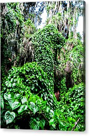 Kudzu Creature Acrylic Print by Christy Usilton