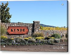 Kunde Family Estate Winery - Sonoma California - 5d19316 Acrylic Print by Wingsdomain Art and Photography