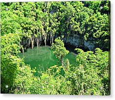 Lake In The Jungle Acrylic Print by Jenny Senra Pampin