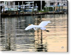 Land In Sight Acrylic Print by Barry R Jones Jr