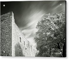 Landscape In Infra Red Acrylic Print by Odon Czintos