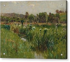 Landscape With Wild Irises Acrylic Print by Bruce Crane