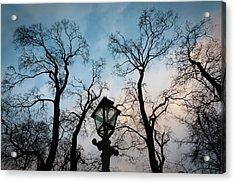 Lantern Acrylic Print by Konstantin Dikovsky