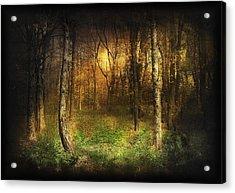 Last Rays Acrylic Print by Svetlana Sewell