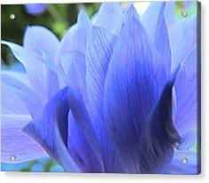 Layers Of Blue Acrylic Print by Eva Kondzialkiewicz