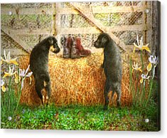 Lead Me Not Into Temptation  Acrylic Print by Trudi Simmonds