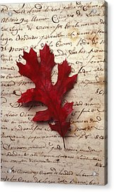 Leaf On Letter Acrylic Print by Garry Gay