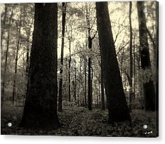 Lean Two Acrylic Print by Ed Smith