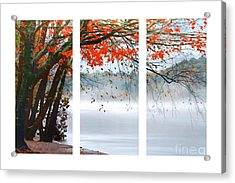 Leaves Of Red Acrylic Print by Darren Fisher