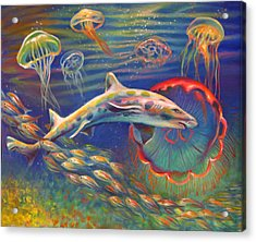 Leopard Shark And Jellyfish Acrylic Print by Nancy Tilles