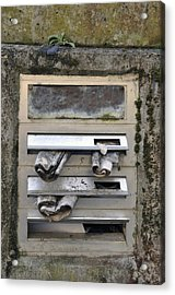 Letterbox With Old Newspapers Acrylic Print by Matthias Hauser
