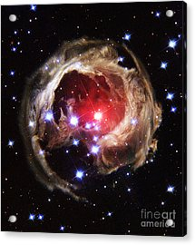Light Echoes From Exploding Star Acrylic Print by Space Telescope Science Institute / NASA