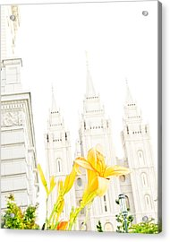 Lily Temple Funky Acrylic Print by La Rae  Roberts