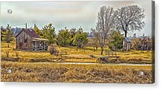 Little House On A Prairie Acrylic Print by Bill Tiepelman