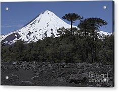 Llaima Volcano, Araucania Region, Chile Acrylic Print by Martin Rietze