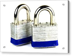 Locks Acrylic Print by Blink Images