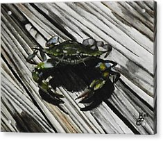Lonely Crab Acrylic Print by Kim Selig