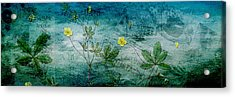Long Ago And Far Away Acrylic Print by Bonnie Bruno