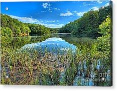 Long Branch Marsh Acrylic Print by Adam Jewell