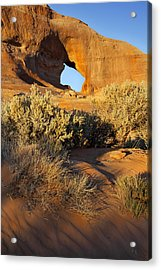 Looking Glass Acrylic Print by Mike McGlothlen