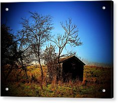 Lost Shed Acrylic Print by Joyce Kimble Smith