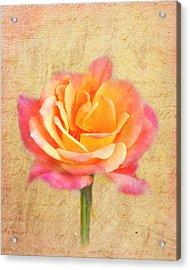 Love Letter Acrylic Print by Jai Johnson