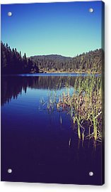Love's What We'll Remember Acrylic Print by Laurie Search