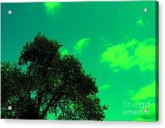 Magical Sky Acrylic Print by Mike Grubb