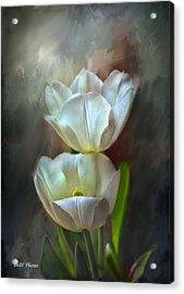 Majestic Tulips Acrylic Print by Bonnie Willis