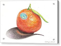 Mandarin Orange Acrylic Print by Sean Paradise