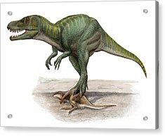 Marshosaurus Bicentesimus Acrylic Print by Sergey Krasovskiy