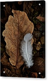 May To October Acrylic Print by Odd Jeppesen
