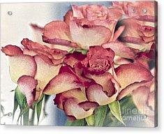 Melody Acrylic Print by Sheila Laurens